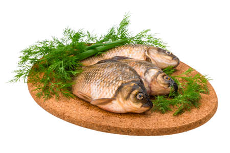 Raw Crucian on the plate with dill Stock Photo - 23228983