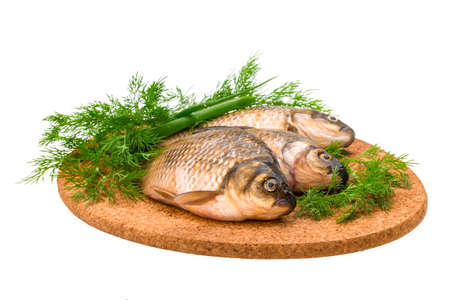 Raw Crucian on the plate with dill Stock Photo - 23373519
