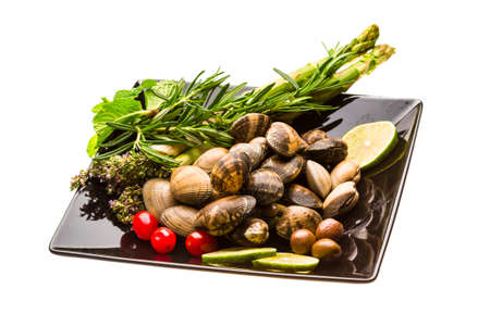 almejas: Spanish mollusc - Almeja Stock Photo