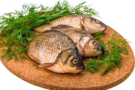 Raw Crucian on the plate with dill photo