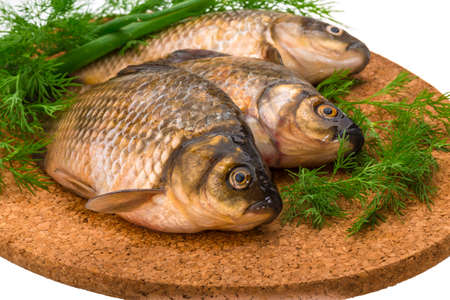 crucian: Raw Crucian on the plate with dill Stock Photo