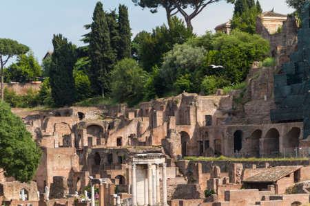 palatine: Building ruins and ancient columns  in Rome, Italy