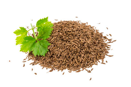 caraway: Heap of caraway isolated Stock Photo