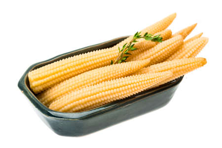 Baby corn isolated photo