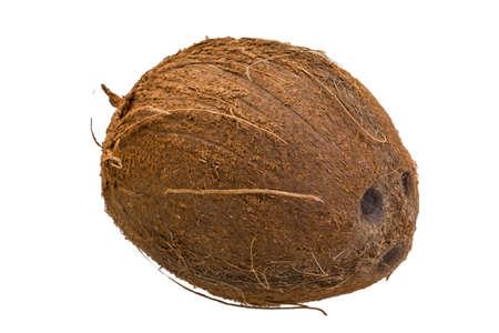 Coconut isolated photo