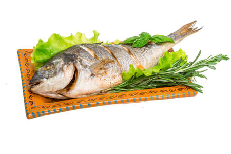 Grilled dorada with rosemary photo