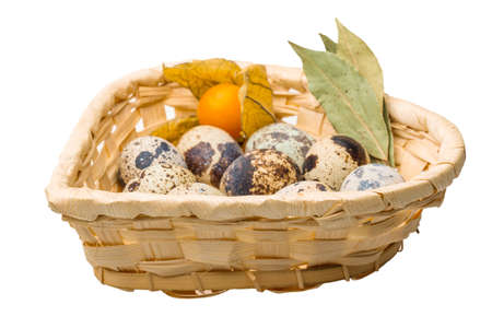 Quail eggs in the basket photo