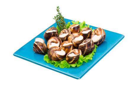 bourgogne: Escargot with cheese sauce Stock Photo