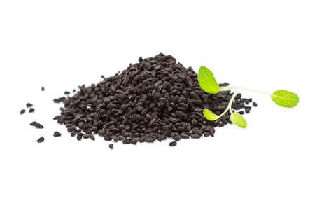 nigella seeds: Nigella with sage