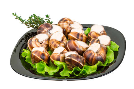 Escargot with cheese sauce photo
