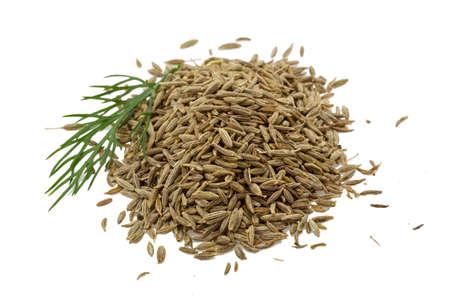Zira seeds isolated on white background