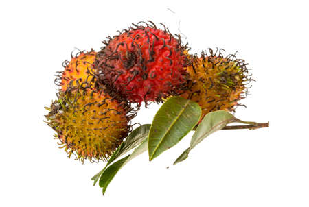 Rambutan with leaves isolated on white photo