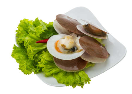 Raw fresh scallops with salad and chili photo