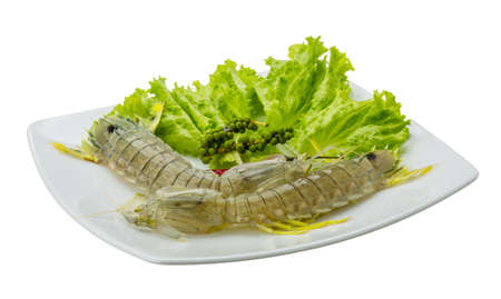 spiny lobster: Raw Spiny lobster - ready for cook