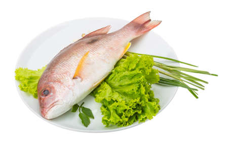 Raw red snapper with salad leaves