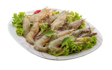 Raw tiger shrimps isolated on white background photo