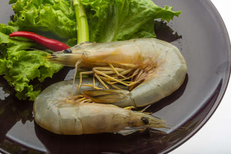 Raw Tiger prawn ready for cooking photo