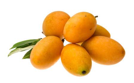 mango tree: Bouea macrophylla heap isolated on white