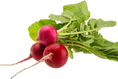Fresh radish with leaves isolated photo
