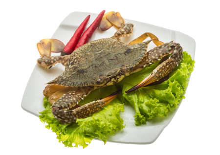 Raw crab ready for cooking photo