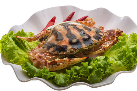 Red crab isolated on white photo