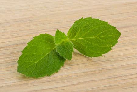 hortel� pimenta: Pimenta folhas de hortel Banco de Imagens
