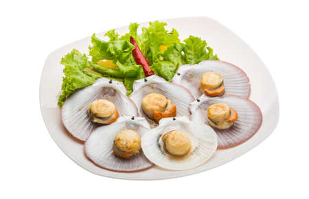 scallops: Grilled scallops with salad leaves