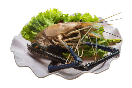 rosenbergii: Big Freshwater prawn ready for cooking Stock Photo