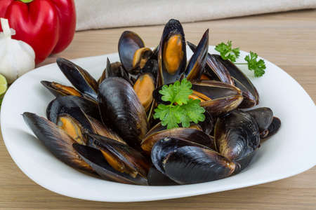 Mussels in the bowl with parsley branch Foto de archivo