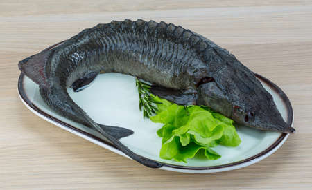 sturgeon: Raw strugeon on the wooden background with salad leaves and rosemary