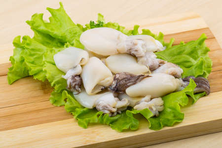 cuttlefish: Raw cuttlefish with herbs on the wood  Stock Photo