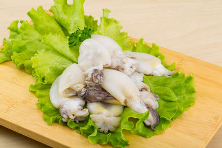 cuttlefish: Raw cuttlefish with herbs on the wood background Stock Photo