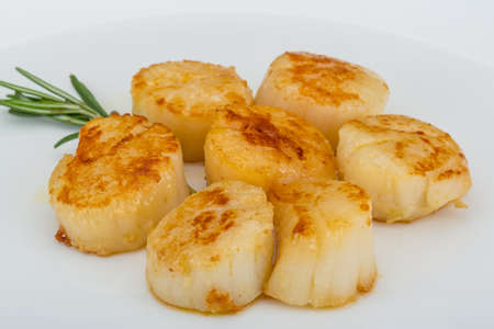 Grilled scallops in the bowl with herbs Foto de archivo