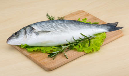 seabass: Raw seabass fish with rosemary and dill