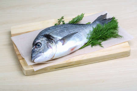 gilthead: Raw dorado fish with dill, rosemary and thyme