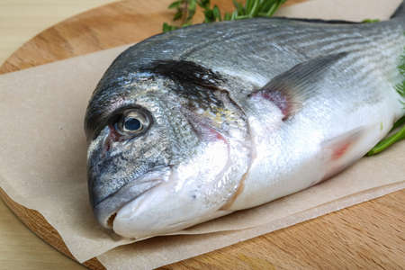 gilthead bream: Raw dorado fish with dill, rosemary and thyme