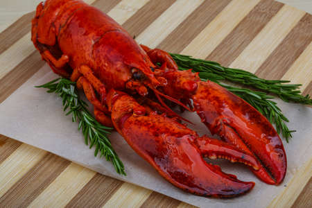 lobster tail: Boiled Lobster with rosemary branches on the wooden background Stock Photo