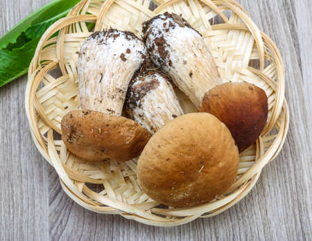 cepe: Wild Mushrooms boletus heap on the wood background