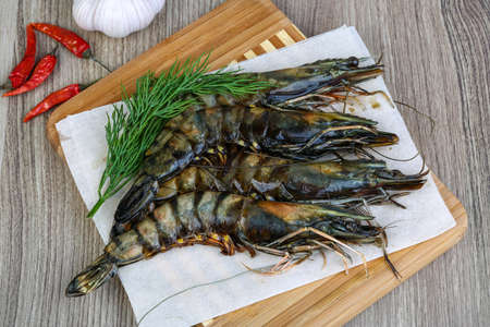 tiger shrimp: Raw tiger king shrimps ready for cooking with dill Stock Photo