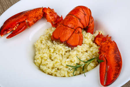 lobster tail: Delicous Risotto with lobster served rosemary and parmesan