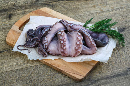 sucker fish: Big Raw octopus with dill ready cooking Stock Photo