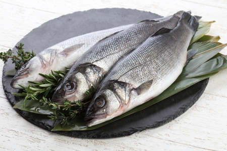 seabass: Raw seabass fish with thyme and rosemary Stock Photo