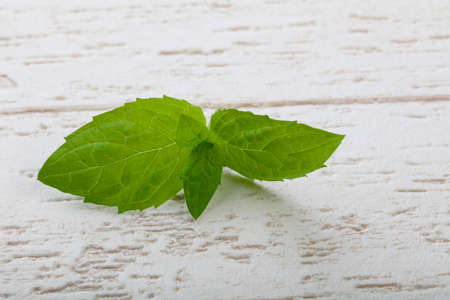 Fresh ripe Mint leaves on the wood background