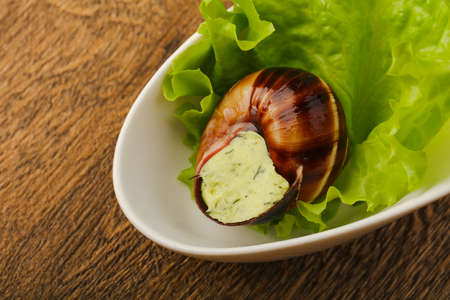 Escargot with cheese cream on salad leaves