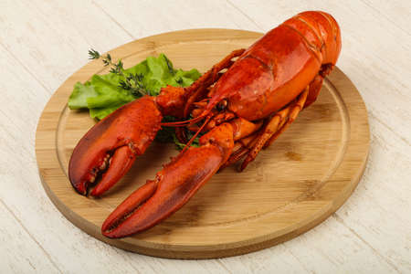 Delicous cuisine - Boiled Lobster ready for eat Stock Photo