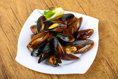 Boiled mussels with parsley on the wood background