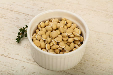 haricot: Raw White beans in the bowl over wooden background