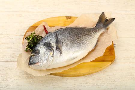 the dorada: raw dorada fish - ready for cooking Stock Photo