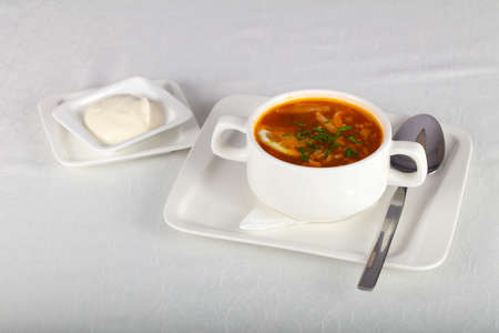 Russian traditional Solyanka soup