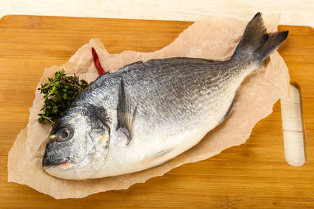 raw dorada fish - ready for cooking Stock Photo